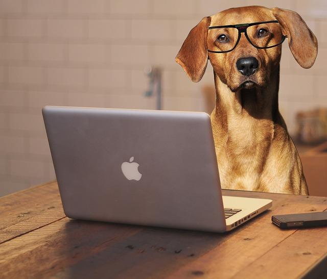 パソコンでアルバイト