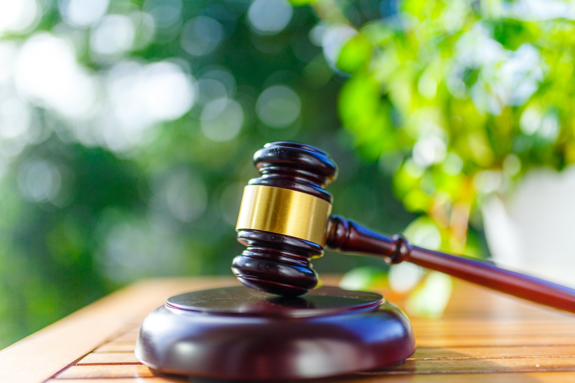 法学部のあるある7選|法学部志望者が知っておくべきことまとめ